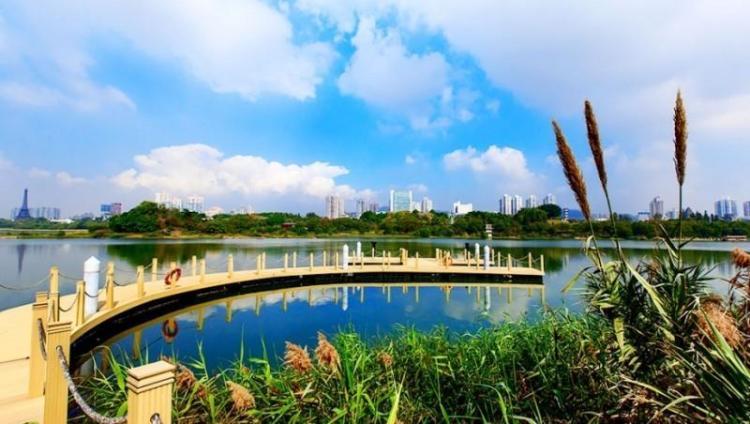 读创--【原创】福田红树林生态公园和华侨城国家湿地公园入围2020公益保护地名录